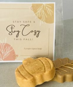 Stay Cozy labelled package with pumpkin and leaf shaped soaps